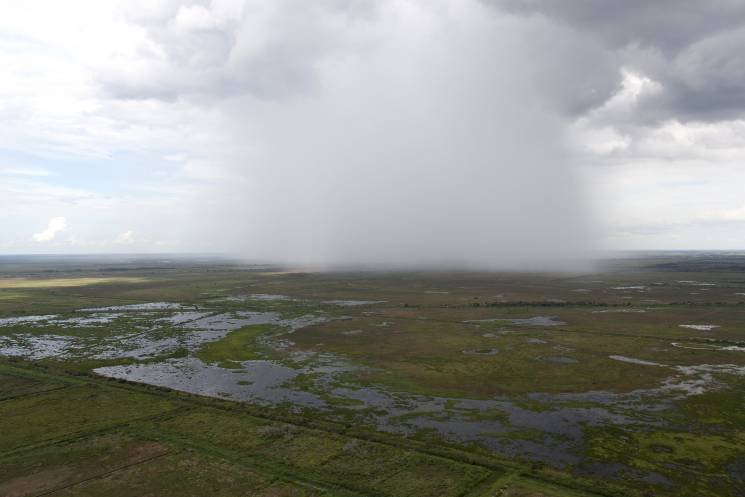 Rain clouds descend over the shrinking Everglades; Getty Images