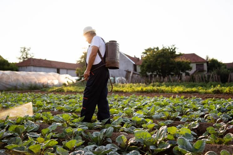 Un agricultor rocía sus cultivos con un pesticida líquido; Getty Images