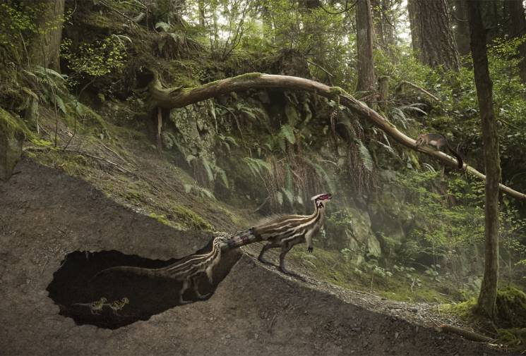 Past meets the future: A burrow-digging dinosaur confronts an early mammal; Julio Lacerda 252MYA