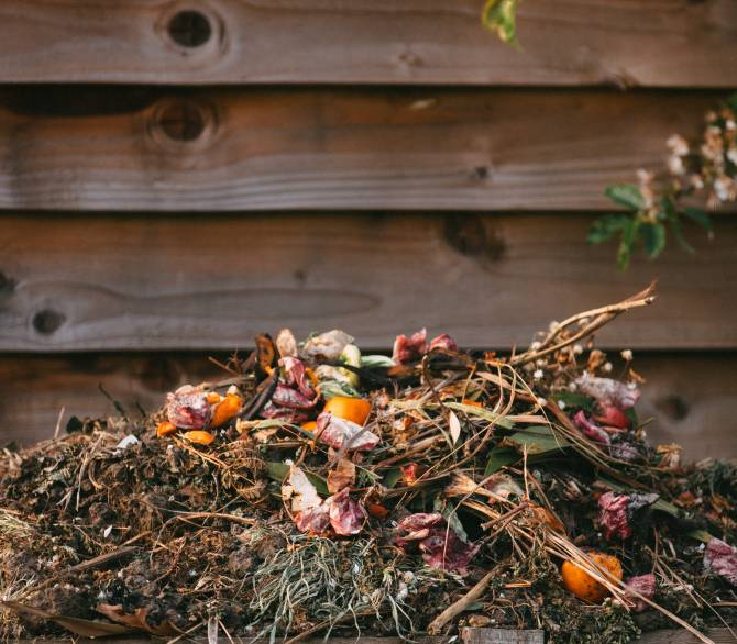 Composting helps fight climate change; Edward Howell on Unsplash