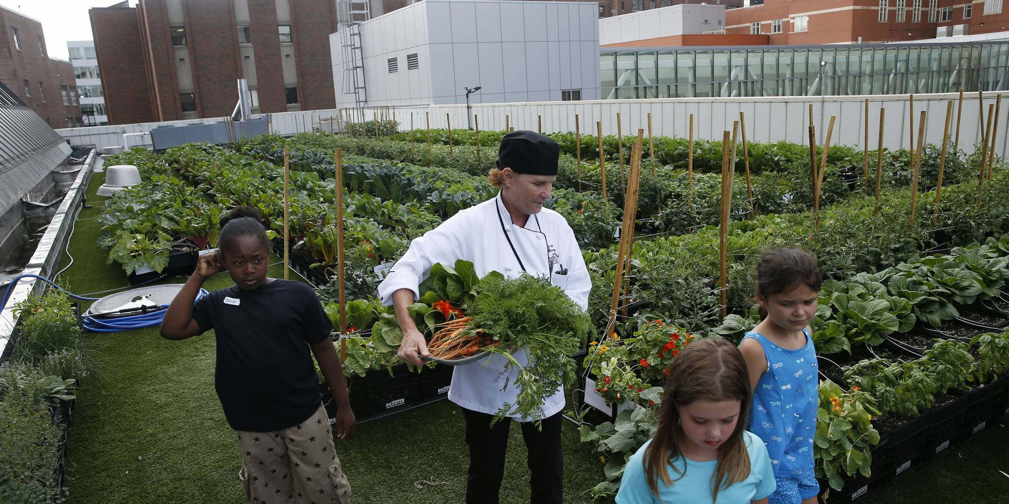 Tracey Burg, center, carries a tray of freshly picked veggies as she and campers from BMC's summer culinary camp walk to the kitchen to make a meal with their harvest at Boston Medical Center's Rooftop Farm in Boston on Jul. 12, 2017. The garden is part of a growing trend in employee wellness. In many instances, community garden groups provide the knowledge, infrastructure, and oversight, and companies provide enthusiastic workers. The produce that is grown is often donated to local food banks or sent home.